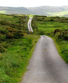 Green road through West Cork, Ireland, part of my solo writing travel experience.