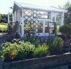 Växthus av gamla fönster Slow Down, Natural World, Relax, Places, Garden, Nature, Instagram, Garten, Naturaleza