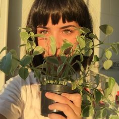 Art Hoe Aesthetic, Plant Aesthetic, Aesthetic People, Aesthetic Colors, Blue Sargent, Plants Are Friends, Foto Pose, Photography Poses, Instagram Feed