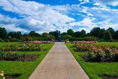 Lyndale park rose garden in Minneapolis.  It'd be a pretty sweet backyard, but I'll settle for having it just a few blocks away