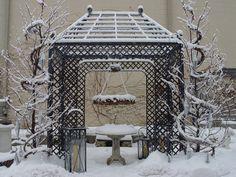 Branch pergola in winter