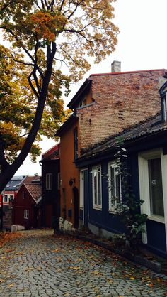 Autumn in the capital, Oslo. Cozy, cold and a lot of colors. #Damstredet