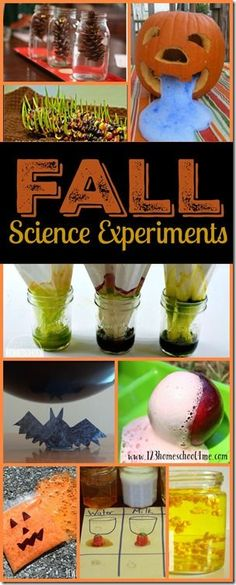13 Fall Science Experiments - so many really unique, clever, and FUN science experiments for kids from toddler, preschool, prek, to kindergarten, 1st grade, 2nd grade, 3rd grade, and 4th grade kids. (Why leaves change color, bat static electricity, erupting pumpkins, germinating Indian corn, popping corn, apple volcano, candy science experiments, and so many more!