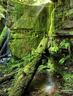 ✯ Centennial Falls in the Coeur d'Alene National Forest n- Idaho