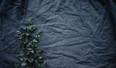 The wonders of linen, a new study reveals the secrets behind its natural sustainability - LifeGate Sustainable Fabrics, Sustainable Fashion, Sustainable Living, Wabi Sabi, Best Beauty Tips, Beauty Hacks, Women's Beauty, Detox Your Home, Textiles