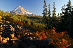 My Dream Vacation to Oregon will include this: Mount Hood, Oregon, USA | Beautiful Places to Visit