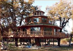 treehouse masters | http://www.treehouses.com/michaels%20ultimate.html