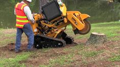 Do you need a tree removed or a stump ground? Call us to take care of it right away. #TreeServices https://triangletree-service.com?utm_source=&utm_medium=&utm_campaign=&utm_content=