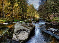 descarca imagini de fundal pădure,  râu,  pietre,  natură Imagini de fundal gratuite pentru rezoluia desktop 3987x2953 — imagine №550954