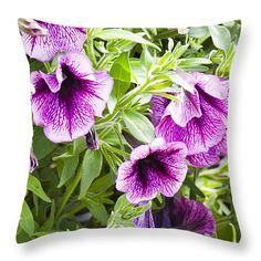 "Morning Glory 20"" x 20"" Throw Pillow by Flamingo Graphix John Ellis. Available in many formats, sizes and prices. Note: watermark ""Fine Art America"" will not appear on final print."