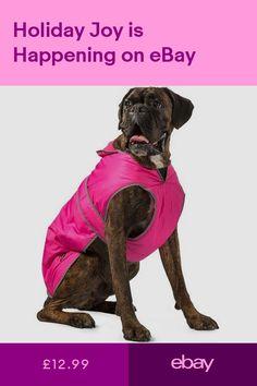 Make Them Snug As A Bug In A Snuggle Bug Get A Free Dog Safety