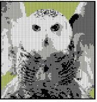 Textile Transfiguration: Harry Potter Blanket Squares Harry Potter Cross Stitch Pattern, Harry Potter Crochet, Marvel Cross Stitch, Cross Stitch Love, Cross Stitching, Cross Stitch Embroidery, Cross Stitch Patterns, Harry Potter Portraits, Minecraft Pattern
