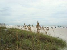 This is the beach at Cherie Down Park in Cape Canaveral, Florida.