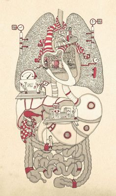 18 Ideas Science Wallpaper Medicine For 2019 Medical Illustration, Illustration Art, Nurses Week Quotes, Illustrations Médicales, Medical Wallpaper, Medical Anatomy, Medical Art, Anatomy Art, Anatomy Organs