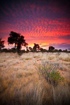 Kings Canyon, the Outback, Australia