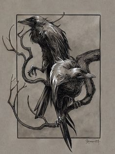 Draw My Face Off — Huginn & Muninn from the Poetic Edda (Norse...