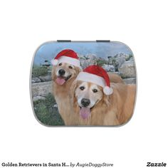 Golden Retrievers in Santa Hats Christmas Jelly Belly Tins