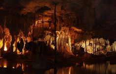 Cenote1054