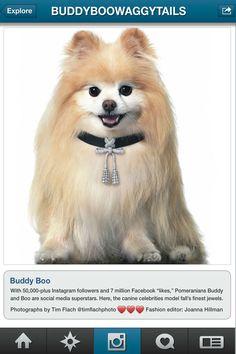 Buddy & Boo - Dior Fine Jewelry necklace