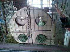 giraffe food enrichment- The wheel was from a carpet shop (for giraffes)