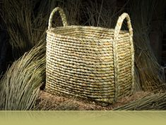 Basketry made from English Rush | Rush Matters