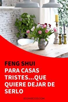 Feng shui decoracion