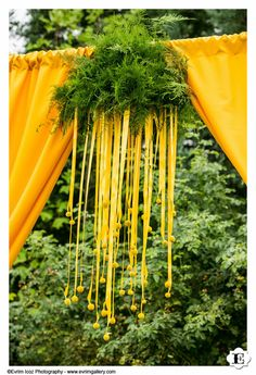 yellow craspedia wedding arch-or any event that needs an entry way