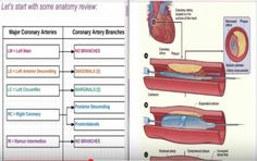 Percutaneous Coronary Intervention (PCI) CPT Coding - Angioplasty Coding