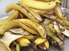 When we eat a banana, we naturally throw away its peel. Well, here are some surprising uses of banana peels and their effects which may be unknown to you. Banana Peel Uses, Psoriasis Diet, Eating Bananas, Soil Improvement, Organic Fertilizer, Organic Gardening, Orchid Fertilizer, Gardening Hacks, Popular Recipes