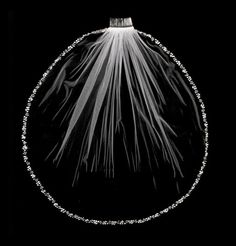 Fingertip Length Beaded Pearl and Rhinestone Edge Wedding Veil -Affordable Elegance Bridal -