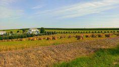Beautiful  Amish Farm Holmes County Ohio