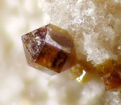 Zemannite, Mg0,5ZnFe3+(Te4+O3)3 • 4,5 H2O.  Bambolla Mine, Moctezuma, Sonora, Mexico Taille=2 mm Copyright Christian Rewitzer