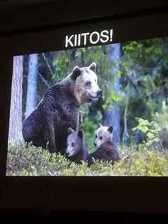 Kimmo Ohtosen luontosuhdetta kuuntelemassa