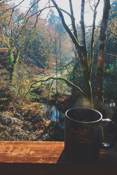 ¿Te imaginas tomar un café aquí? Do you imagine how could be to drink your coffee there? Cabin In The Woods, Relax, Adventure Is Out There, Morning Coffee, Coffee Break, The Great Outdoors, The Dreamers, Serenity, Beautiful Places