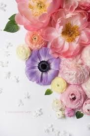 Image result for pick flower petals