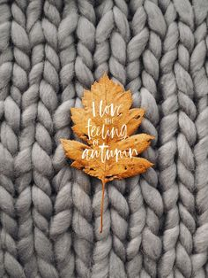 Shared by Shorena Ratiani. Find images and videos about autumn, fall and cozy on We Heart It - the app to get lost in what you love. fondos Image about autumn in Fall Ideas by Shorena Ratiani Cute Fall Wallpaper, November Wallpaper, Pretty Phone Wallpaper, Halloween Wallpaper, Fall Wallpaper Tumblr, Holiday Wallpaper, Iphone Wallpaper Herbst, Autumn Iphone Wallpaper, Fall Backgrounds Iphone