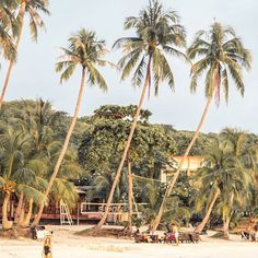 A hidden gem of Koh Pangan called ✨Leela Beach✨located just a few minutes from Haad Rin Beach where the famous Full Moon Party takes place. This is the number two on our top list❤ . . . #thailand  #wearetravelgirls #ladiesgoneglobal #globelletravels #tlpicks #travelandleisure #beautifuldestinations #beautifulmatters #womenwhoexplore #womenwhotravel #traveltagged #youmustsee #lifewelltravelled #femmetravel #travelblogger #viaparadise #discoverglobe #wonderfuldestinations #travelawesome…