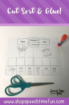 Cut, Sort, and Glue for the Entire Year - no prep and perfect for speech therapy to work on basic vocabulary, sentence structure, categories, possessive nouns, and more!
