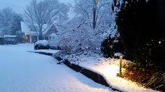 Nashville landscape lighting plays softly against the winter snow. Landscape Lighting Design, Path Lights, Commercial Lighting, Lighting Solutions, Winter Snow, Night Time, Outdoor Lighting, Nashville, Outdoor Gardens