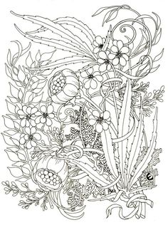 Coloring Page For Adults Wheel Mandala By Egle