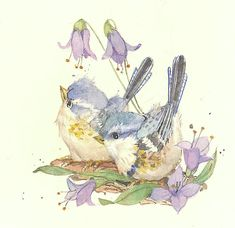 Nature in Miniature IV by Carolyn Shores Wright Watercolor Bird, Watercolor Artwork, Watercolor Illustration, Bird Drawings, Animal Drawings, Cute Drawings, Bird Coloring Pages, Watercolor Painting Techniques, You Draw