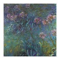 Jewelry lilies by Claude Monet: Category: Art Currency: GBP Price: GBP47.00 Retail Price: 47.00 0