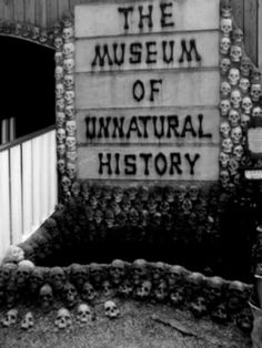 I am going to do a hallway of Museum of Unnatural History for the Halloween Party for Girl Scouts...  @Lindsey Skinner what do you think???