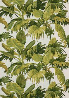 Résultats Google Recherche d'images correspondant à http://img.archiexpo.fr/images_ae/photo-g/papier-peint-motif-floral-49363-1577253.jpg