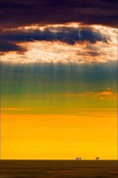 地平線にキリン - アフリカ、ナミビア