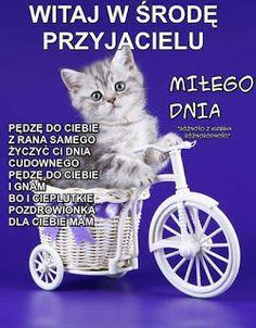 Gify i Obrazki: MILEJ ŚRODY Good Morning, Humor, Wednesday, Buen Dia, Bonjour, Humour, Funny Photos, Funny Humor, Comedy