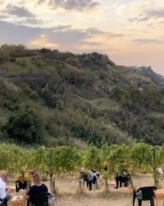 Dinner in the vineyards in Tuscany Tuscany, Vineyard, Destination Wedding, Wedding Decorations, Wedding Inspiration, Country Roads, Map, Weddings, Dinner