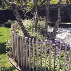 Formed landscapes rustic coastal fence detail drevený plot r Coastal Gardens, Beach Gardens, Hot Tub Garden, Garden Pool, Rustic Landscaping, Backyard Landscaping, Fence Design, Garden Design, Jacuzzi