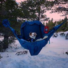 Amok hammock in 23°c minus at Rondane nasjonalpark, Norway. March 2017.
