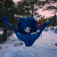 Amok hammock in 23°c minus at Rondane nasjonalpark, Norway. March 2017.